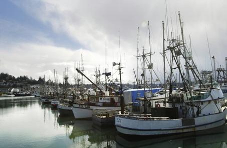 salmon_boats